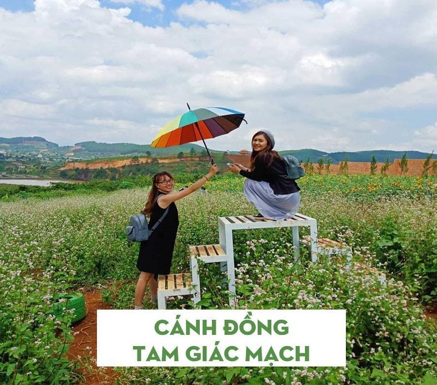 Những địa điểm chụp hình đẹp ở Đà Lạt